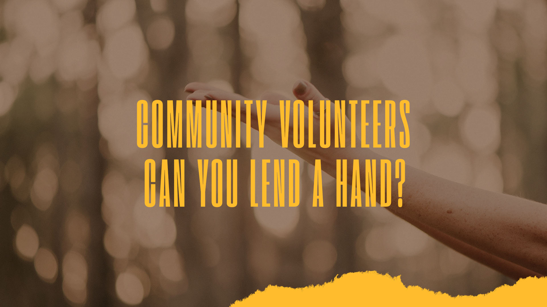 Community volunteers - web